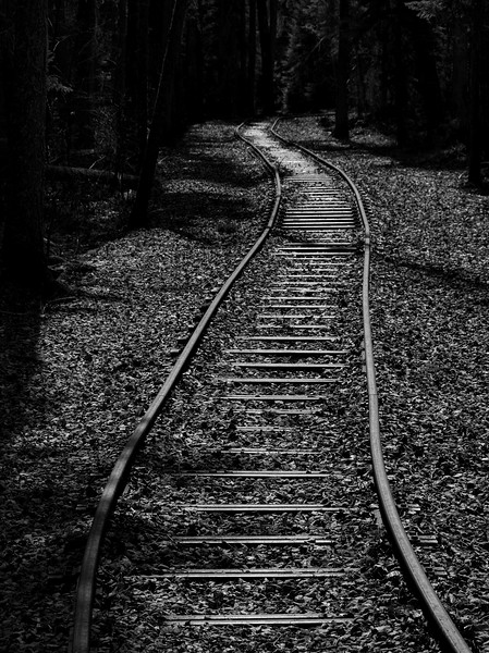 BW-Going Off the Rails-Bruce Guenter
