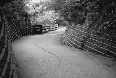 BW-A Downward Path-Helen Brown