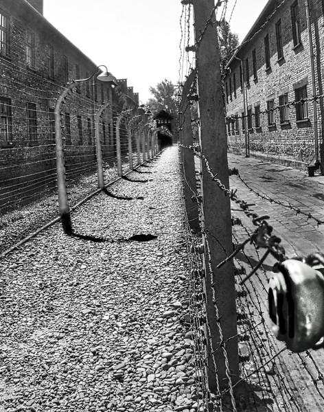 1Print-BW-Auschwitz Death Camp-Rob Arthur