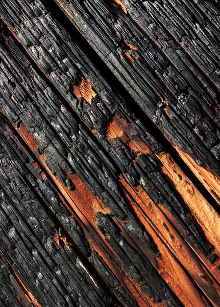 TR-Burnt Wood-Barbara Rackel