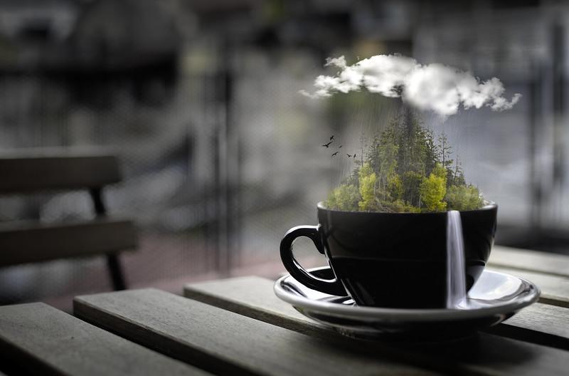 2-Craving A Li'l Dose Of Nature-Cheryl Lalonde