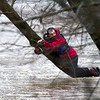 T.J. Schlink of Effingham clings to a tree in Green Creek after being dumped out of his kayak in late March. File Photo