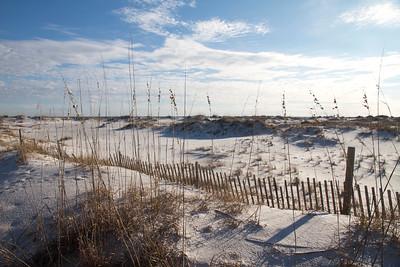 January - Gulf Coast (Florida and Alabama)