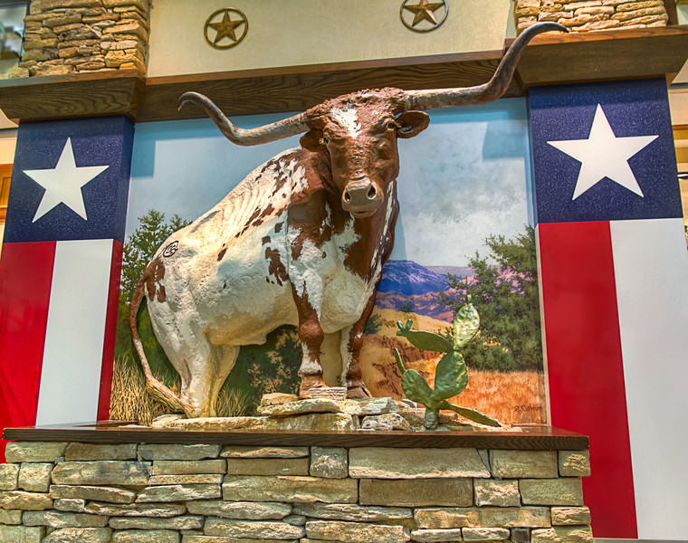 Airport Longhorn<br /> When walking through the international terminal at Houston Intercontinental Airport, this life-size diorama is available for visitors to stand in front of for a quick snapshot for friends back at home.