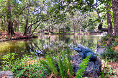 "The Frog by the Lake There are few things more relaxing than floating in a calm, shady pool, pond or lake. I'm fortunate to have good friends that have a hidden gem in the middle of town, an oasis of sorts. Their neighborhood has a small lake the homes are built around. Though their home isn't the newest, they have an incredible ""lagoon"" of sorts, with large overhanging shade trees. It's always a treat to visit, but you add their lake to the mix and it's a day of paradise.   This little frog stands watch over the lake, enjoying the beauty of a warm afternoon."