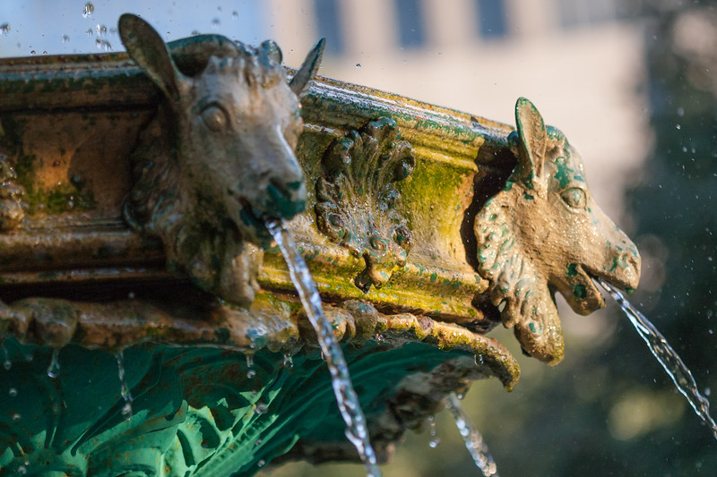 The Scanlan Fountain in Sam Houston Park has decorative goats that pour water to the fountains pool. Photo by Tim Stanley Photography.