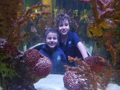 Grade 3 Field Trip to South Florida Science Center and Aquarium