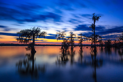Twilight on Lake Martin Swamp