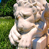 Madison's Lion<br /> This tired kitty was resting quietly above the gardens at Montpelier, the home of President James Madison in Orange, Virginia.