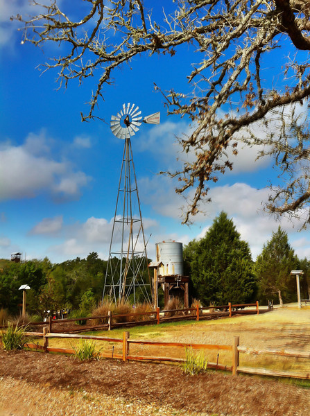 During our volunteer stint at Camp Tejas, I stopped just long enough to take this windmill one morning. I'm pretty sure it's strictly decorative, but its rustic decor added to the flavor of the area. Rumor had it that the lake was about as warm as bath water, so you know it was hot. Photo by Tim Stanley Photography.