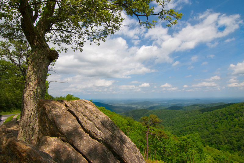 Recently, I had a chance to take my own family on Skyline Drive through the Shenandoah National Park in the Blue Ridge Mountains of Virginia. Photo by Tim Stanley Photography.