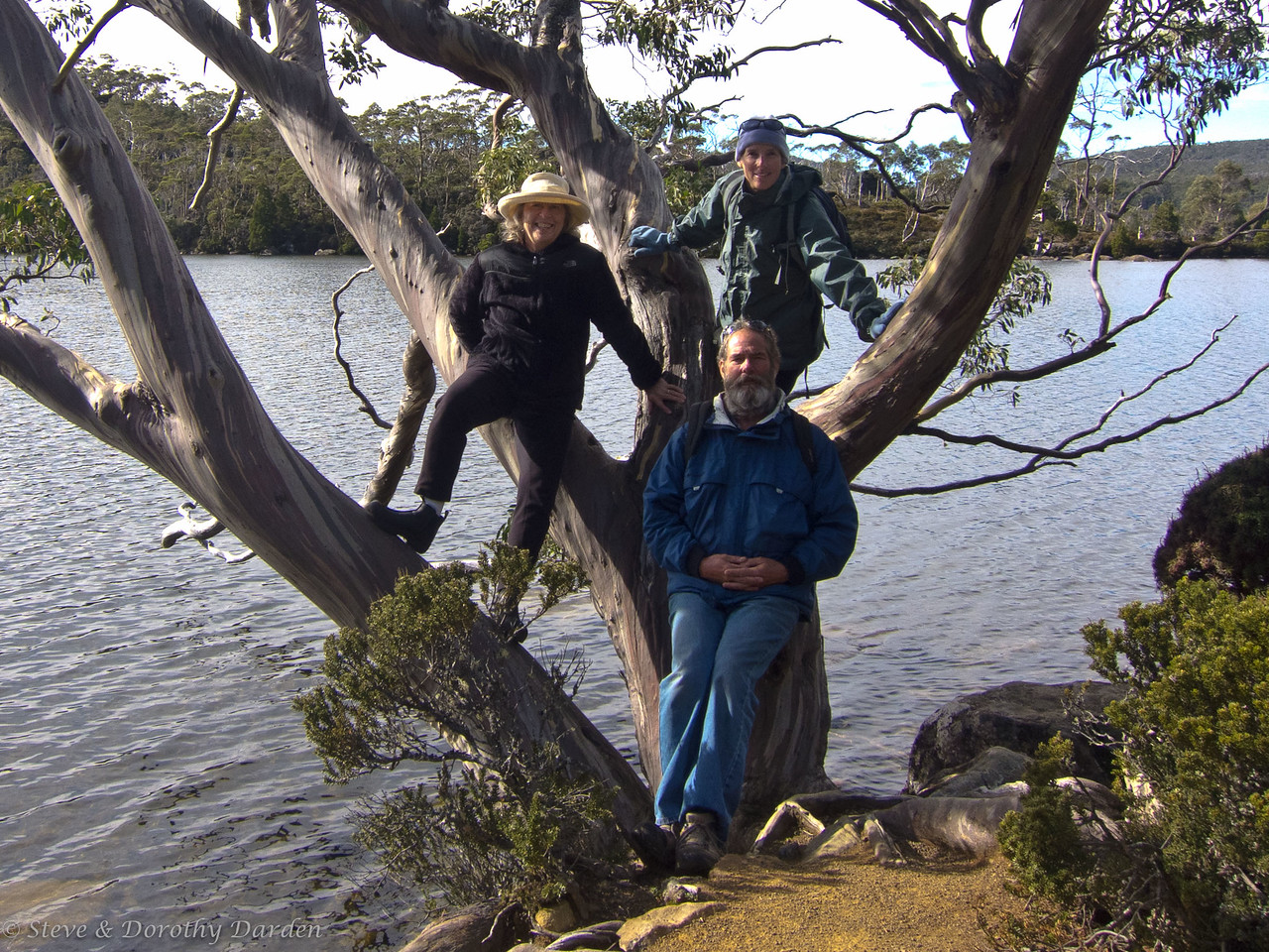 Dorothy, Guy and Karen and Tasmanian Snow Gum at Lake Dobson