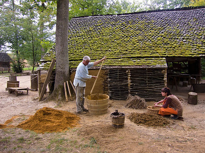 Making daub for the walls of buildings.