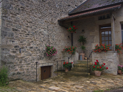 Cottage with geraniums