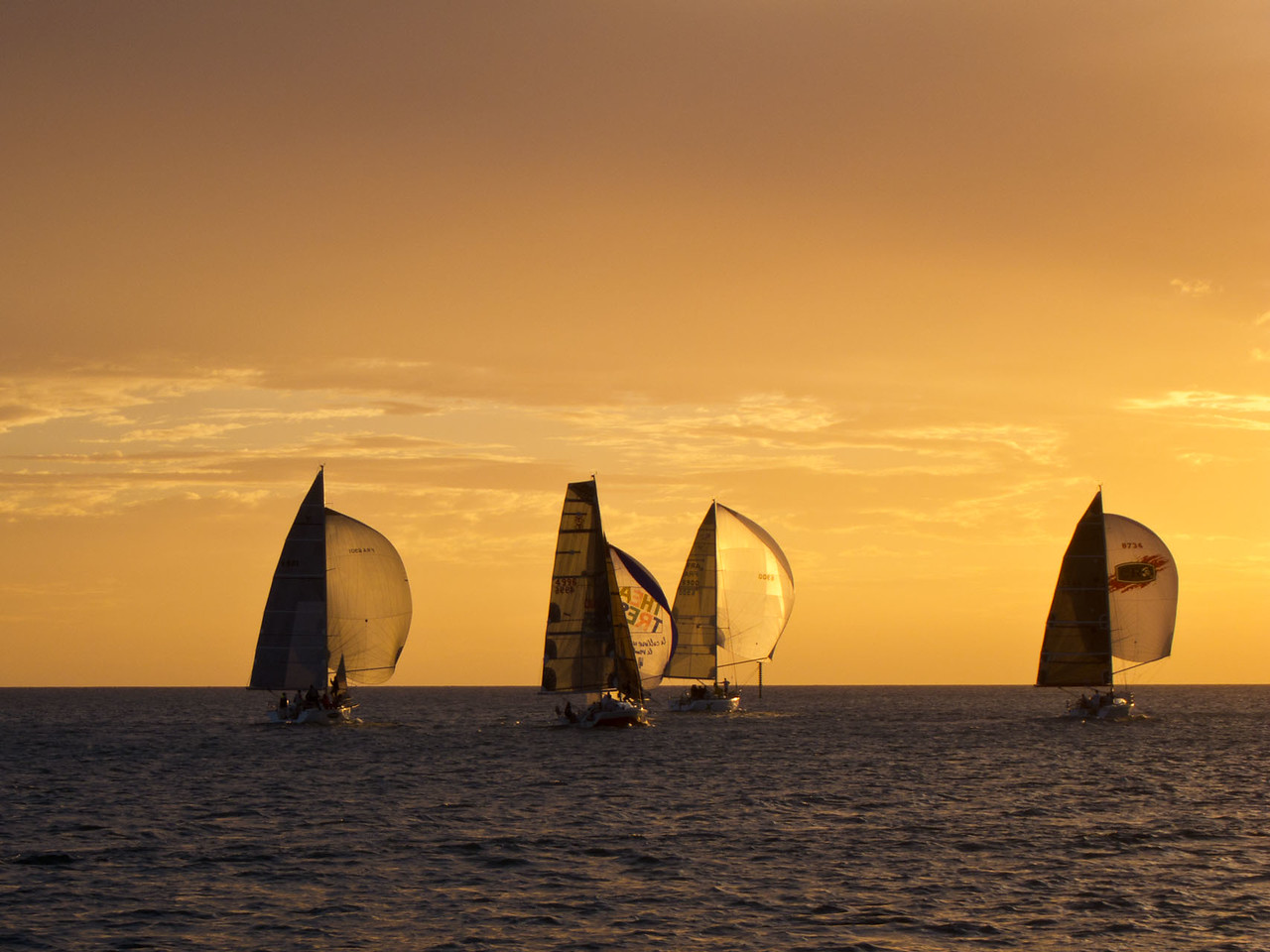 Evening races at Baie de l'orphelinat