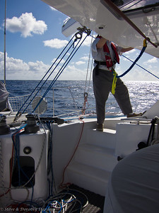 Steve prepares to trim the headsails (note elastic tether to overhead jackline)