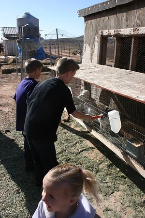 Feeding critters at Uncle Deward's farm.