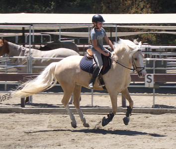 Sarah rides Flight during a lesson.  No stirrups!
