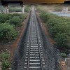 Tracks to capture Light