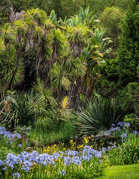 Huntington gardens-13