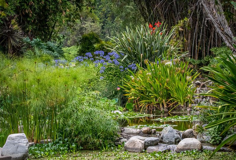 Huntington gardens-8