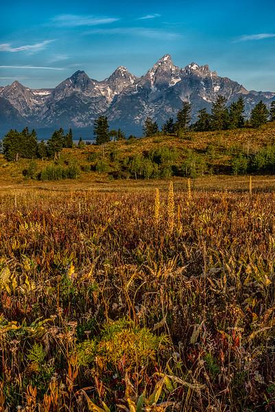 Grand Teton NP-28
