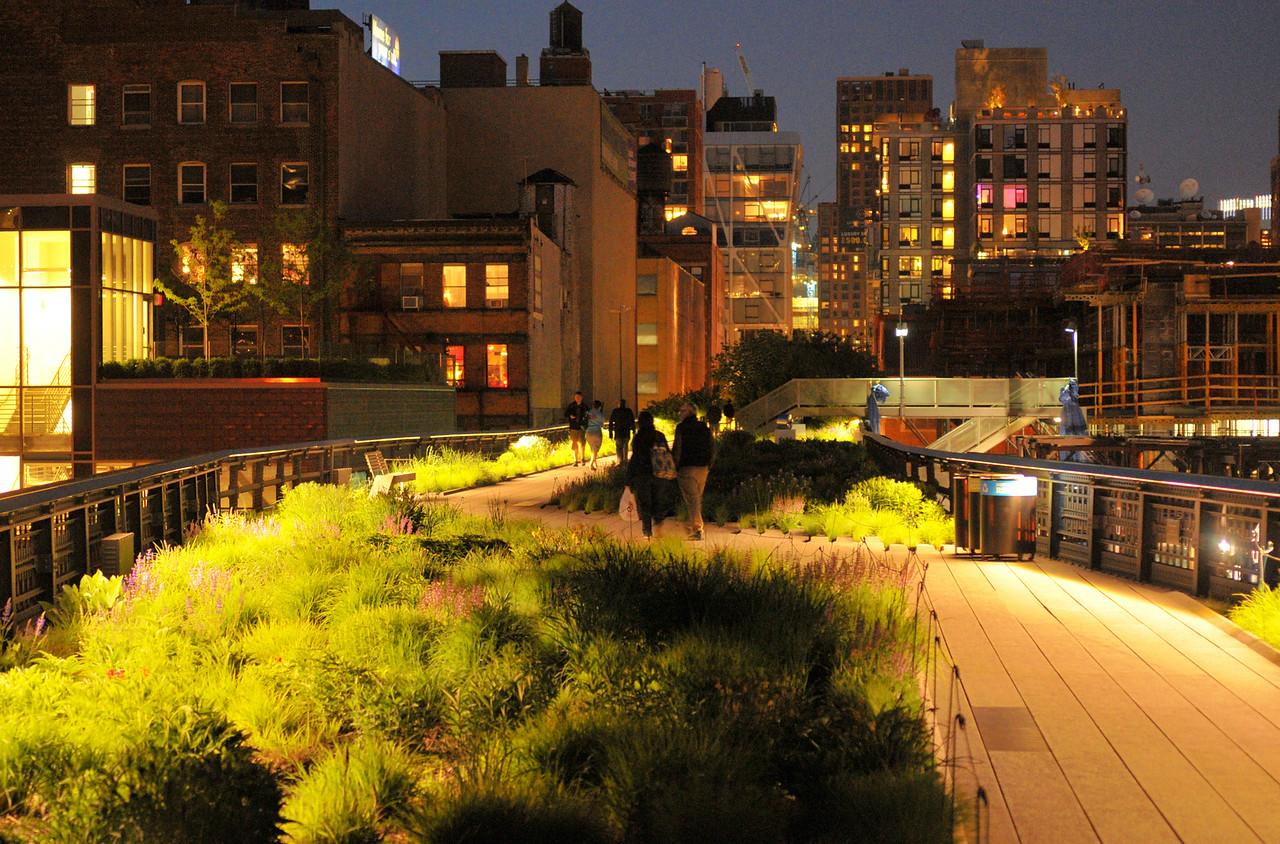 Chelsea Grasslands Night Lights