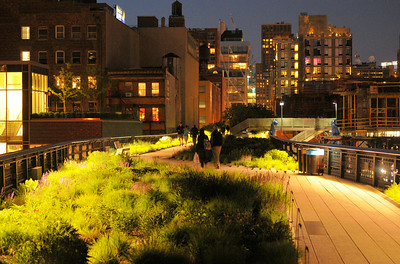Chelsea Grasslands Night Lights