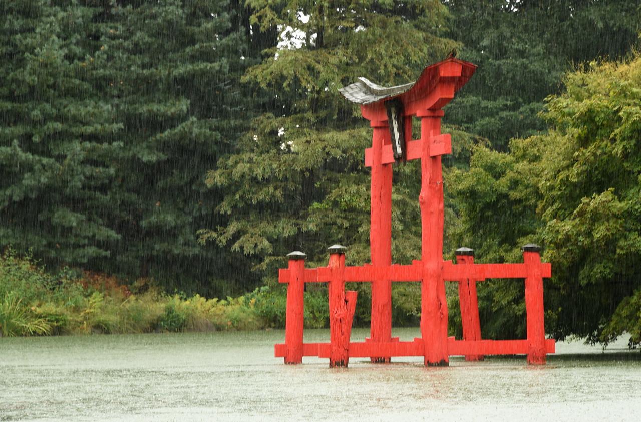 Rainy Torii