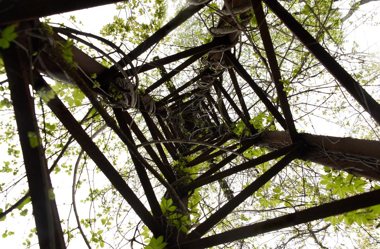 Electric Tower Swirl