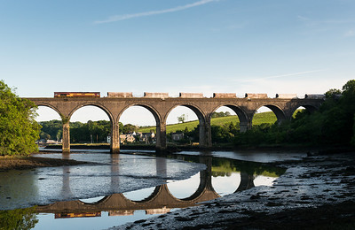 010612 Cant believe we got this in the sun,viaduct reflection etc etc. 66116 on 6C43 FO 18:43 St.Blazey-Exeter Riverside cross Forder viaduct.