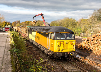 081112 I still find it hard to believe we are seeing Colas 56's on the Teigngrace branch. So well pleased with the shots today.