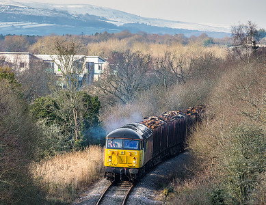 240113  56094 pops into view whilst heading down the Teigngrace branch