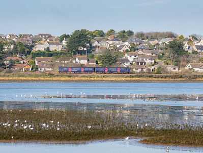 200113  Teal,Widgeon,Lapwings,Shell ducks and a FGW DMU.150122 heads the first service of the day on the St Ives branch down the Hayle estuary