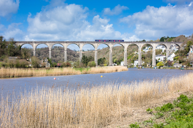 120415  The assistant mans the tripod on the banks of the Tamar and bags 150122 on the magnificent Calstock viaduct