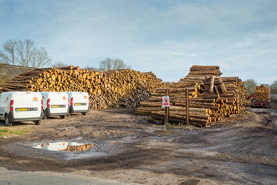 Is there enough logs for another few trains......yes...