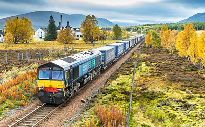 """231015 Our luck finally ran out,but at least you get the """"iconic"""" Dalwhinnie distillery in the shot.66425 passes us with the Mossend-Inverness intermodal,again it left around 1100.....Unlike other Scottish trips when its usually """"never again"""" I cant wait to get back again!!!"""