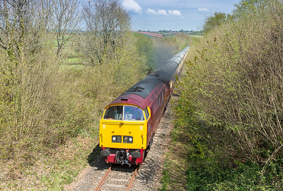 070516   Gone are the Gunnstone Mills shots so it was a last minute panic to find somewhere to get a shot,we eventually stumbled into this spot and I am well pleased.....D1015 on 1Z52 0737 London Paddington to Okehampton pass Butsford bridge near Colebrooke on the Meldon branch