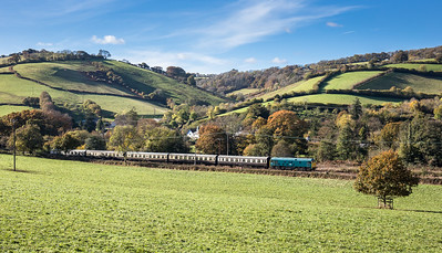 061116  D5081 heads down the Dart valley near Luscumbe with the  1030 Totnes - Buckfasleigh