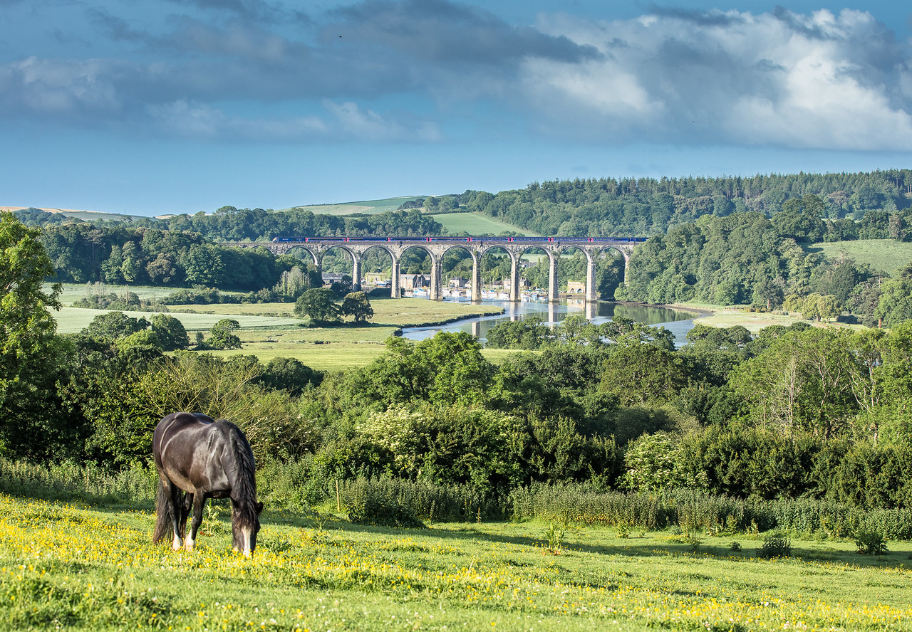070617  FGW 125 heads the  1A77 0541 Penzance to London Paddington over St Germans Viaduct.