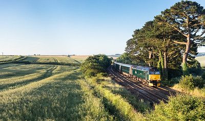 170617  57602 passes Trerulefoot with the down sleeper.