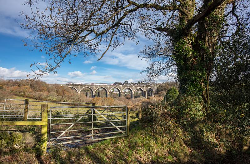 161117   Arriva 220 heads over Moorswater viaduct.