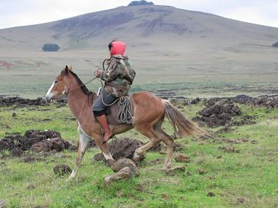 Easter island gaucho