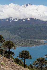 Volcano, Lake and Auracarias