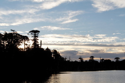 Evening on the laguna