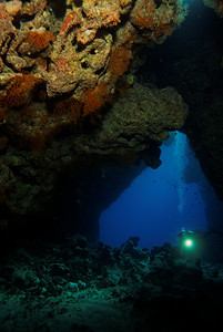 Reef Caves - St John's reef, Egypt
