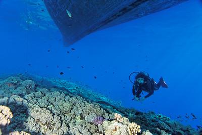 Sous le bateau