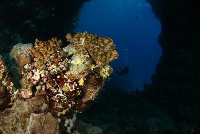 Underwater arch