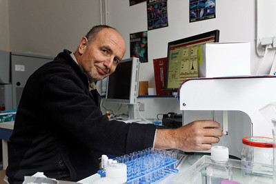 Running samples on the Accuri C6 - Station Biologique de Roscoff - Jan 2012