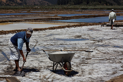 Collecting the salt - Salinas Cahuil-Barrancas, Chile